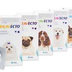 bravecto flea medication, bravecto seizures, bravecto dog deaths, bravecto FDA warning, bravecto india launch, bravecto tick medication