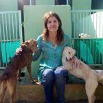 Animal hospital rajasthan, rajasthan animal shelter, Rachel wright vet nurse, dog vaccination india, dog sterilization India, animal rescues india, TOLFA India