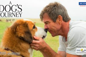 NewsOnPets, A Dog's Journey, Bailey, Reliance Entertainment